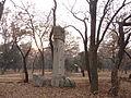 Kong Yuxu - western bixi - seen from ENE - P1060243.JPG