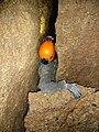 Konglomerathöhle Rohrendorf PLDC0113.jpg