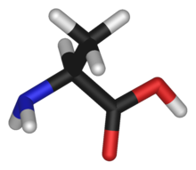 L-alanine-3D-sticks.png