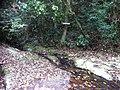 LAJEADO - panoramio (2).jpg
