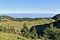 La Dôle - panoramio (26).jpg