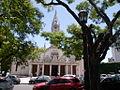 La plata catedral con arbol.JPG