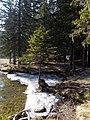 Lago di Dobbiaco (12).jpg