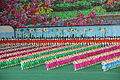 Laika ac Arirang Mass Games (7934598558).jpg