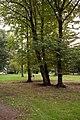 Lainate 10-2009 - panoramio (1).jpg