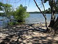 Lake Ronkonkoma Ducks - panoramio.jpg
