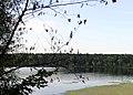 Lake Vadnais - Vadnais Heights, MN - panoramio (1).jpg
