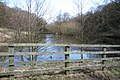 Lake on edge of Stony Cliffe Wood - geograph.org.uk - 738114.jpg