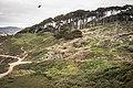 Lands End, San Francisco (35555042146).jpg
