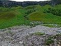 Landslide - geograph.org.uk - 508966.jpg