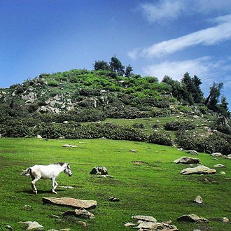 Aragam - The view of Langmarg meadow in Aragam Bandipore Kashmir