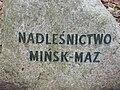 Lasy chojnowskie głaz Mińsk Maz fot Kamil Korbik MojePiasecznoPl.jpg