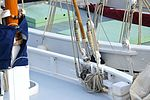 Le sloop de pêche AMPHITRITE (6).JPG