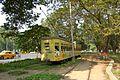 Le tramway de Calcutta, October 31, 2011.jpg