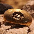 Leda-themed ring IMG 4355.JPG
