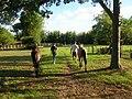 Levando os cavalos pra mangueira - panoramio.jpg
