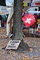 Lindenhof - «Occupy» Zürich-Lindenhof 2011-10-21 17-42-04.JPG