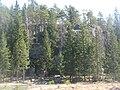 Linnavuori Masku 2009.jpg