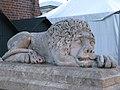 Lion statue-Door steps-Town Hall Tower-Kraków.jpg
