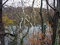 Little River Potomac Back Channel.JPG