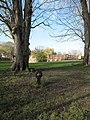 Lock past the trees - geograph.org.uk - 1628744.jpg