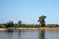 Loire-bei-avrilly.JPG
