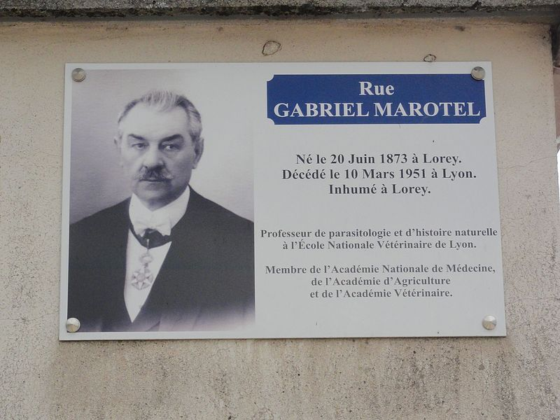 Lorey (M-et-M) plaque Rue Gabriel Marotel
