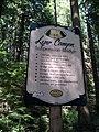 Lynn Canyon Park, BC (2013) - 1.jpg