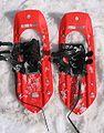 MSR snowshoes.jpg