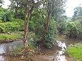 Majhgawan, Madhya Pradesh 485661, India - panoramio (1).jpg