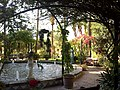 Majorque Alcudia Port Hotel Baya Alcudia Jardin 20062015 - panoramio (1).jpg