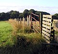 Makeshift Fence - geograph.org.uk - 907253.jpg
