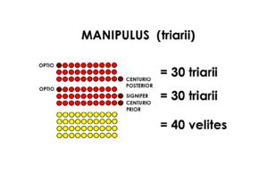 Triarii - Image: Manipulus triarii Polybius