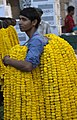 Marigold Seller (5552441478).jpg