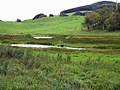 Marshland, Linglie farm - geograph.org.uk - 1474901.jpg