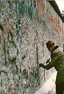 Mauerspecht 1989