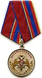 Medal Veteran of Service National Guard.jpg
