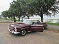 Mercedes with Open Door - At the Audubon Butterfly, New Orleans 01.jpg