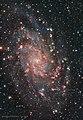 Messier 33 - Flickr - gjdonatiello.jpg