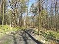Mikolow, Poland - panoramio (128).jpg