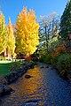 Mill Race (Marion County, Oregon scenic images) (marDA0061b).jpg