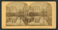 Mirror view of Cathedral Rocks, 2.660 ft. Cal, by Littleton View Co. 2.png