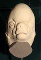 Modell des Kopfes eines menschlichen Fetus am Anfang des 3. Entwicklungsmonats.jpg