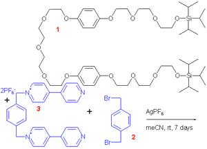 Molecular shuttle - molecular shuttle 1991 components