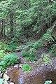 Moneypenny Creek 2.jpg