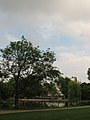 More trees and water - I love it! (540133963).jpg