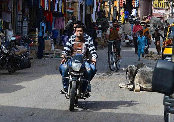 Motorcycle, Jaisalmer.jpg