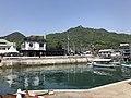 Mount Kurotakiyama and Tadanoumi Ferry Terminal from pier of Tadanoumi Port.jpg