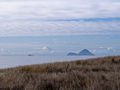 Moutohora Island New Zealand-7200003.jpg