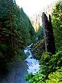 Mt. Baker-Snoqualmie National Forest (9292814412).jpg